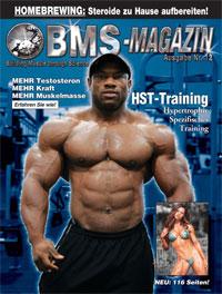 BMS-Magazin Nr. 12