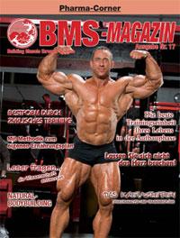 BMS-Magazin Nr. 17