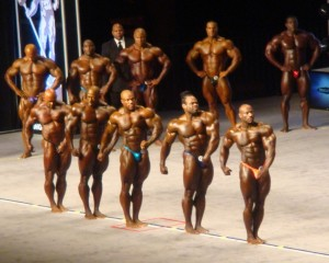 Mr.Olympia 2012  Top 5 ( John Corlett Foto)