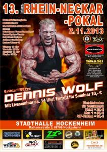 poster_Rheinneckarbb2013
