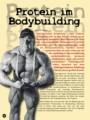Protein im Bodybuilding. Von Erik Dreesen